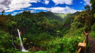 Eco Resorts and Centers of Biological Research in Costa Rica