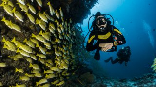 Diving and Snorkelling Costa Rica