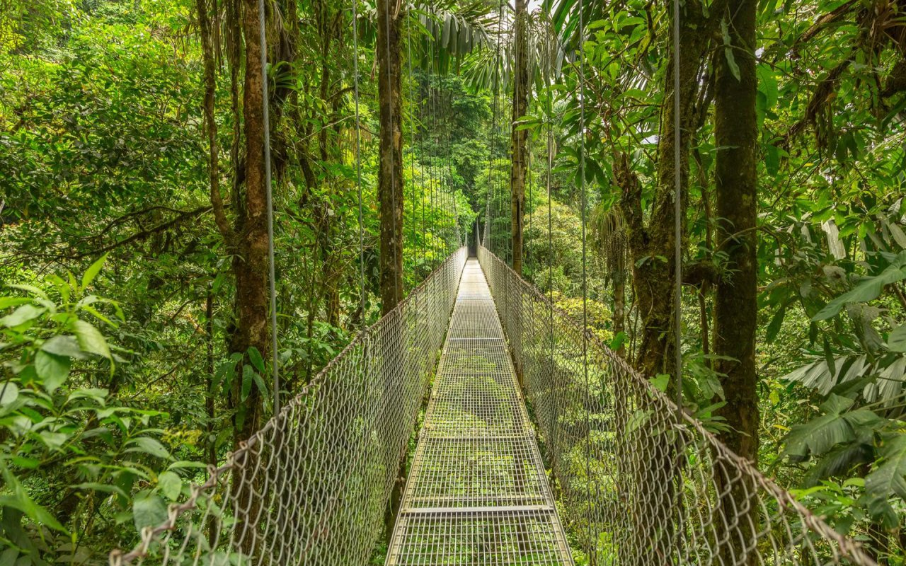 Simply the Best of Costa Rica Tour